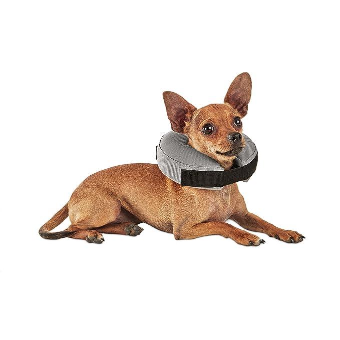 Amazon.com: Bien & Buena Inflatable Collar para perros y ...