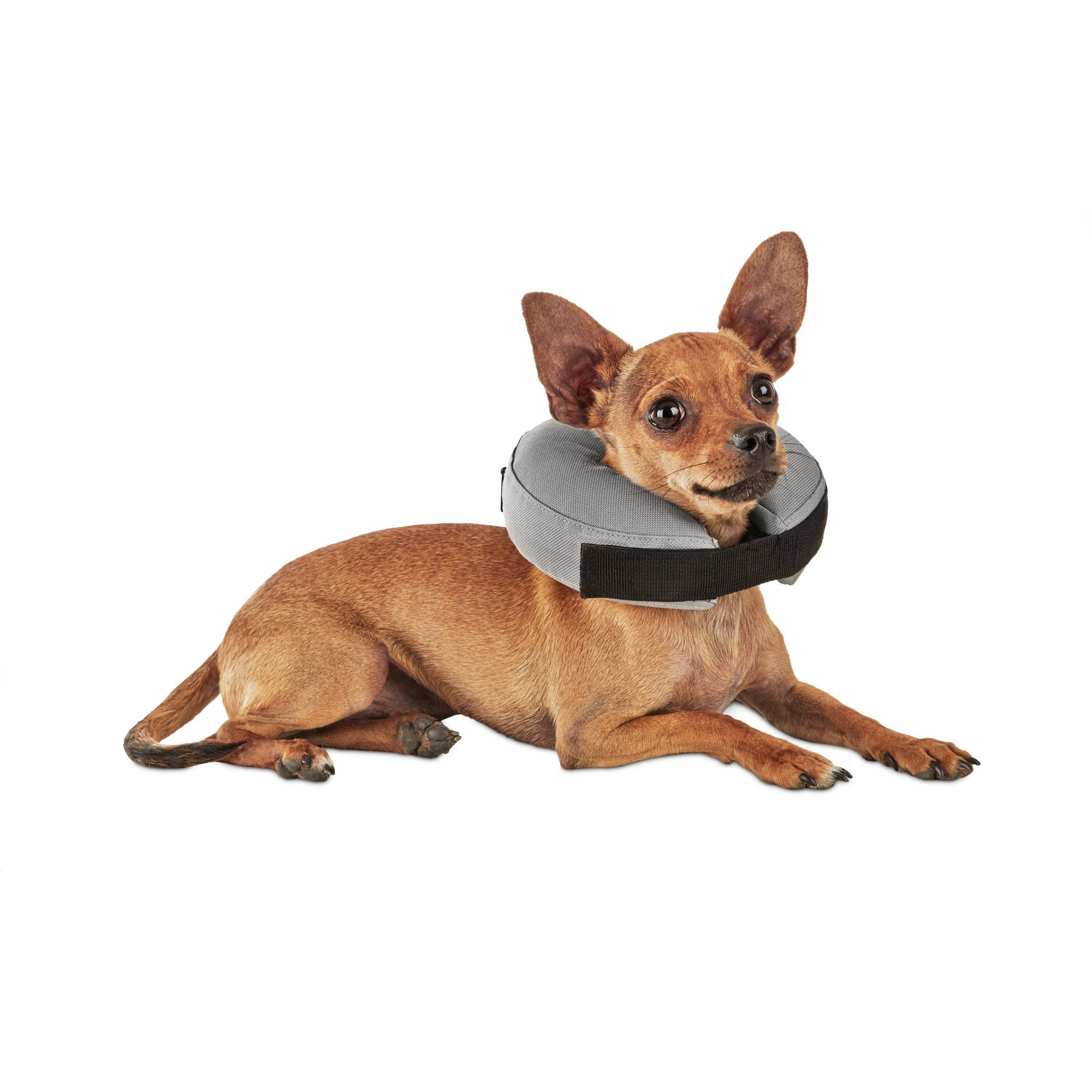 Well & Good Inflatable Collar for Dogs and Cats, XX-Small