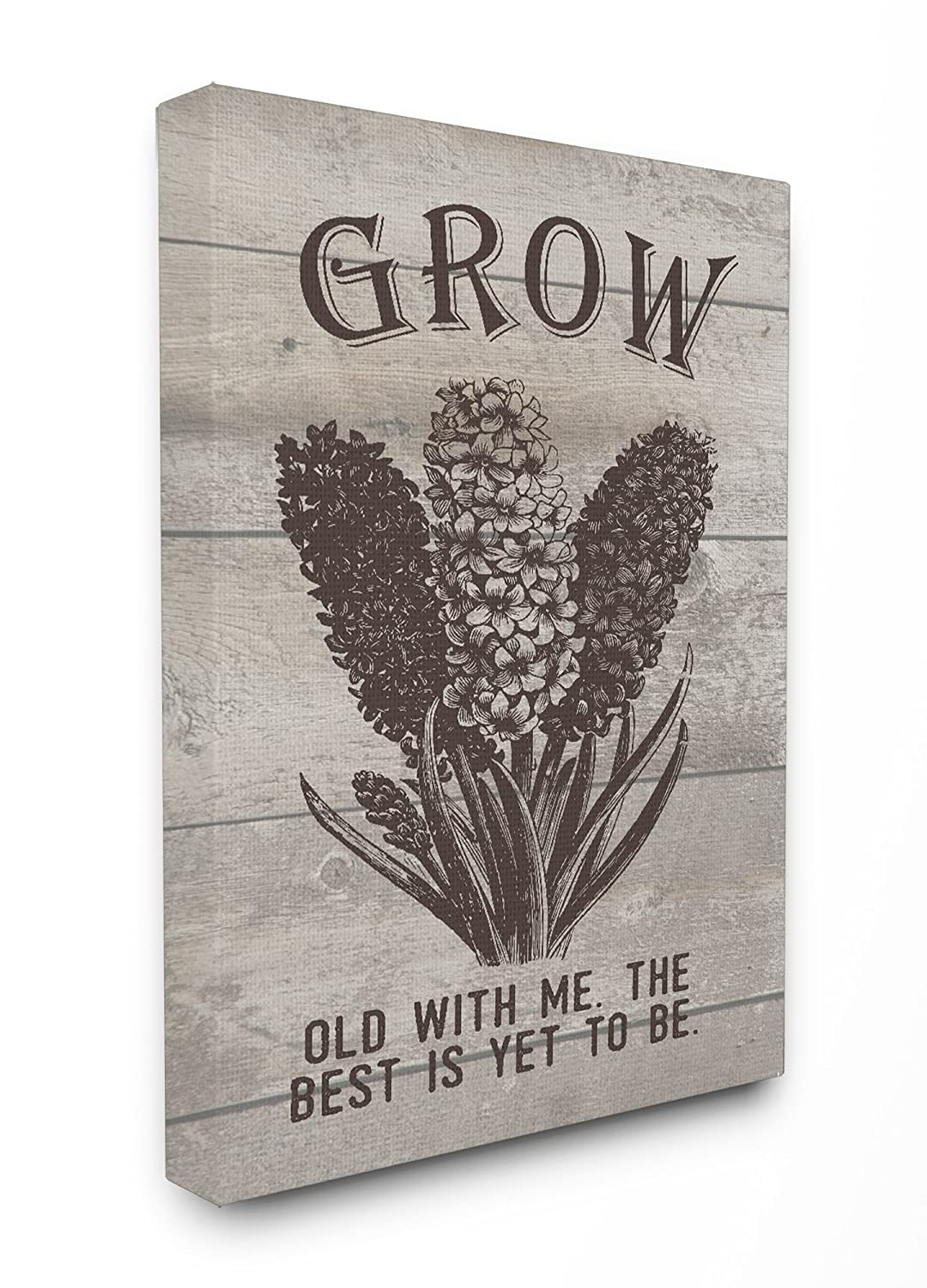 Proudly Made in USA Stupell Home D/écor Grow Old With Me Vintage Hyacinth Oversized Stretched Canvas Wall Art 24 x 1.5 x 30