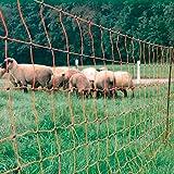 Rutland 28-170R  Filet de clôture orange pour troupeau de mouton 50 m