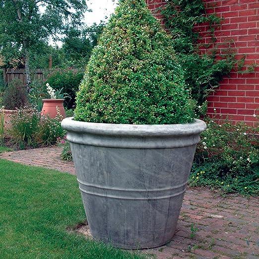 Macetero grande Garden - Giant jarrón de flores maceta de piedra: Amazon.es: Jardín