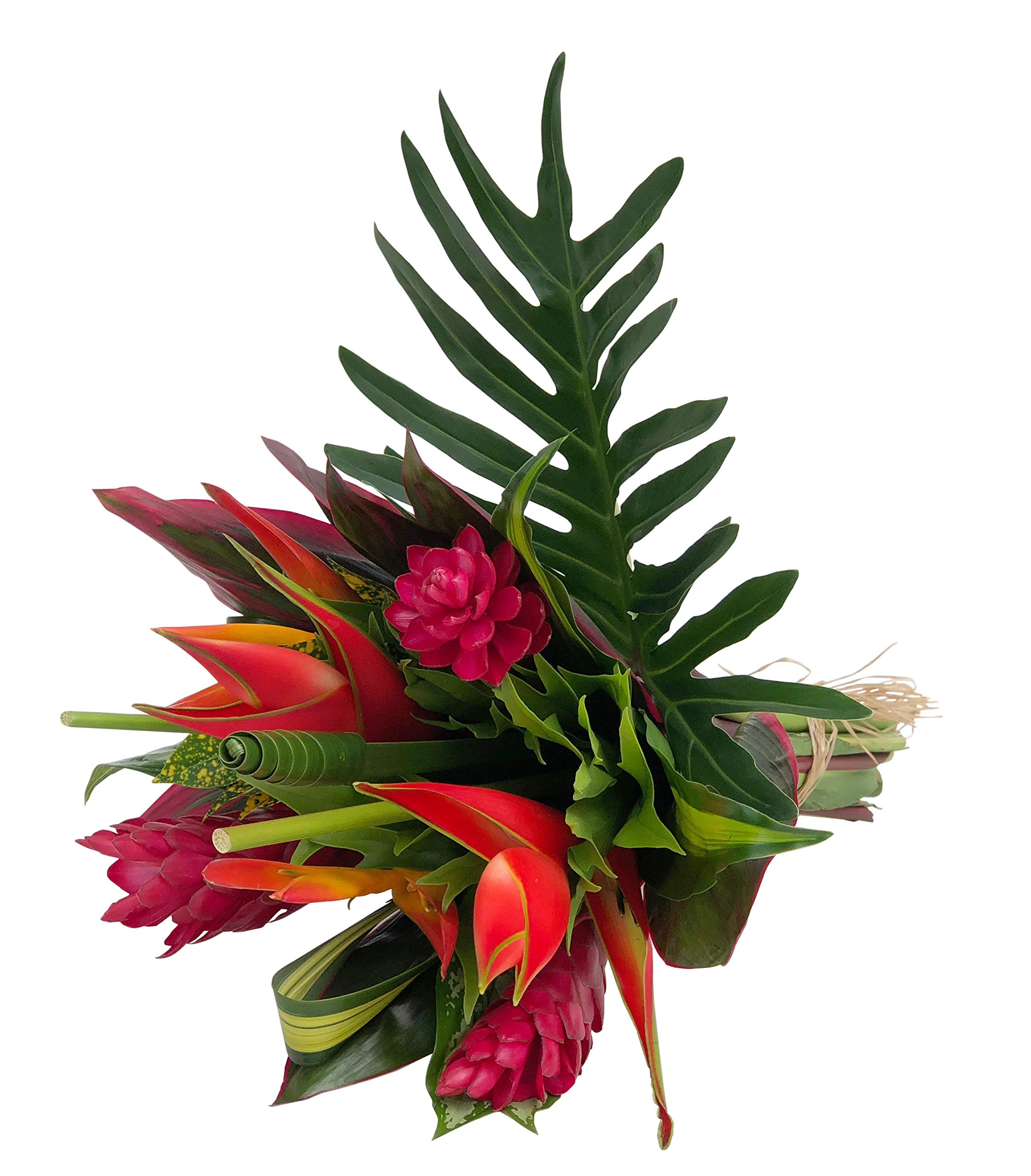 Tropical Bouquet Tropical Treasure with Bright Birds of Paradise, Pink Ginger, and Bold Tropical Greenery by BloomsyBox (Image #6)