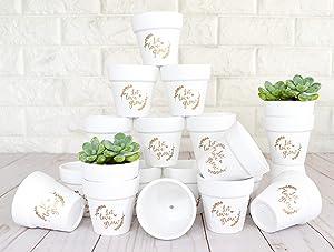 Let Love Grow 2.5 Inch Succulent Pots White Mini 20 Pcs Small Clay Pots White Terracotta Ceramic Pottery Planters White Flower Pots for Succulent Favors, Baby Showers, Wedding Favors (Gold Print)