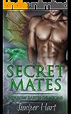 Secret Mates (Hollow Earth Dragons)
