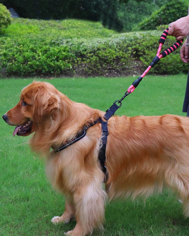 PrimoLiving Madera Arco para Mascotas