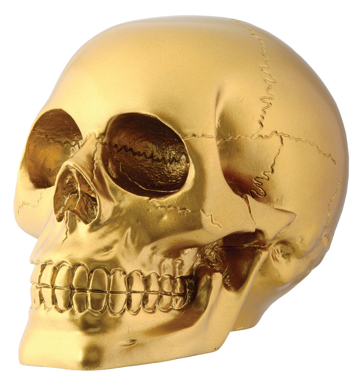 StealStreet Gold Skull Head Collectible Skeleton Decoration Figurine StealStreet (Home) SS-Y-7747