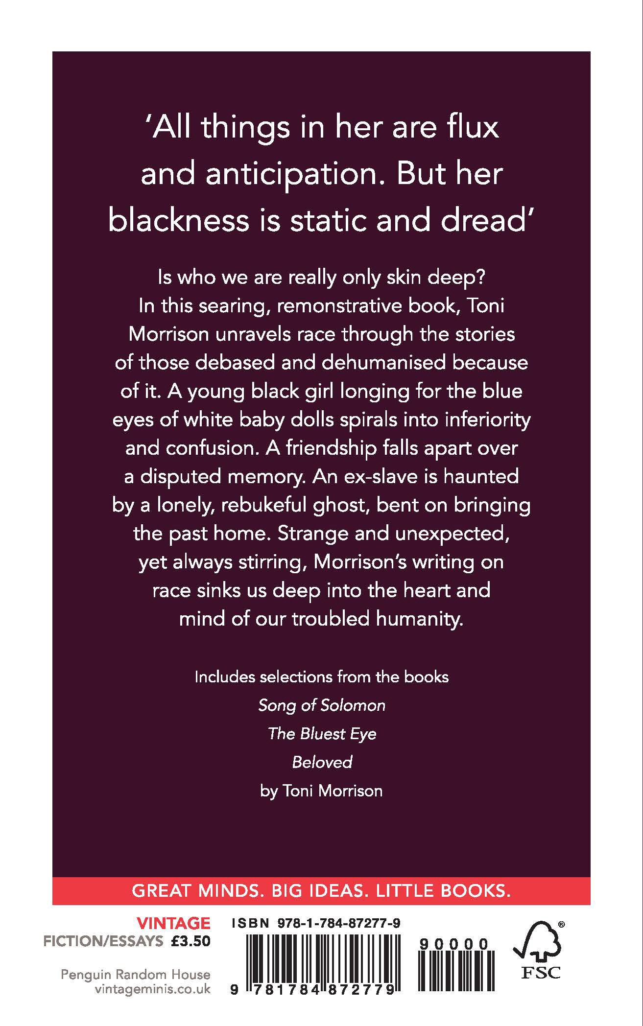 Race Vintage Minis Toni Morrison  Amazoncom Books  Buy Business Plans also Best Man Speech Writing Services  Apa Sample Essay Paper