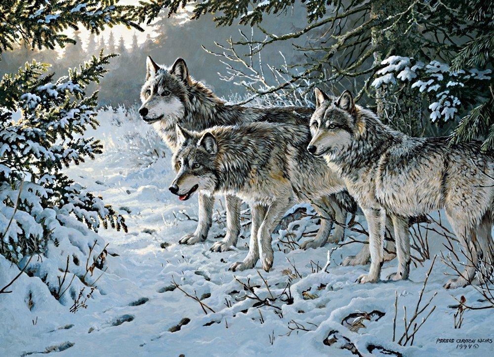 Reducción de precio Cobble Hill 51738 - Weirs: Wolf Trail - Puzzle 1000 Teile