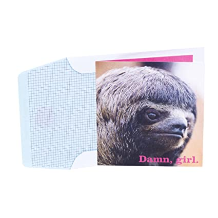 Amazon hallmark studio ink birthday greeting card for her hallmark studio ink birthday greeting card for her sloth face slow that awesome down m4hsunfo