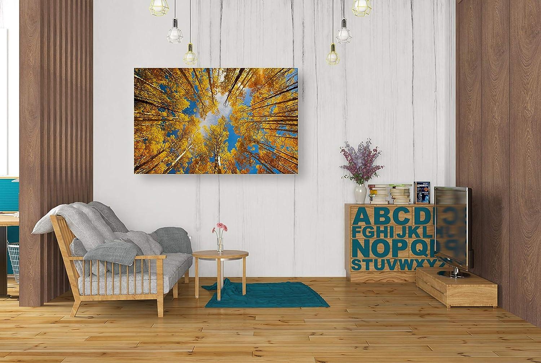 Gold Epic Graffiti Towering Aspens Giclee Canvas Wall Art by Darren White 12 x 18