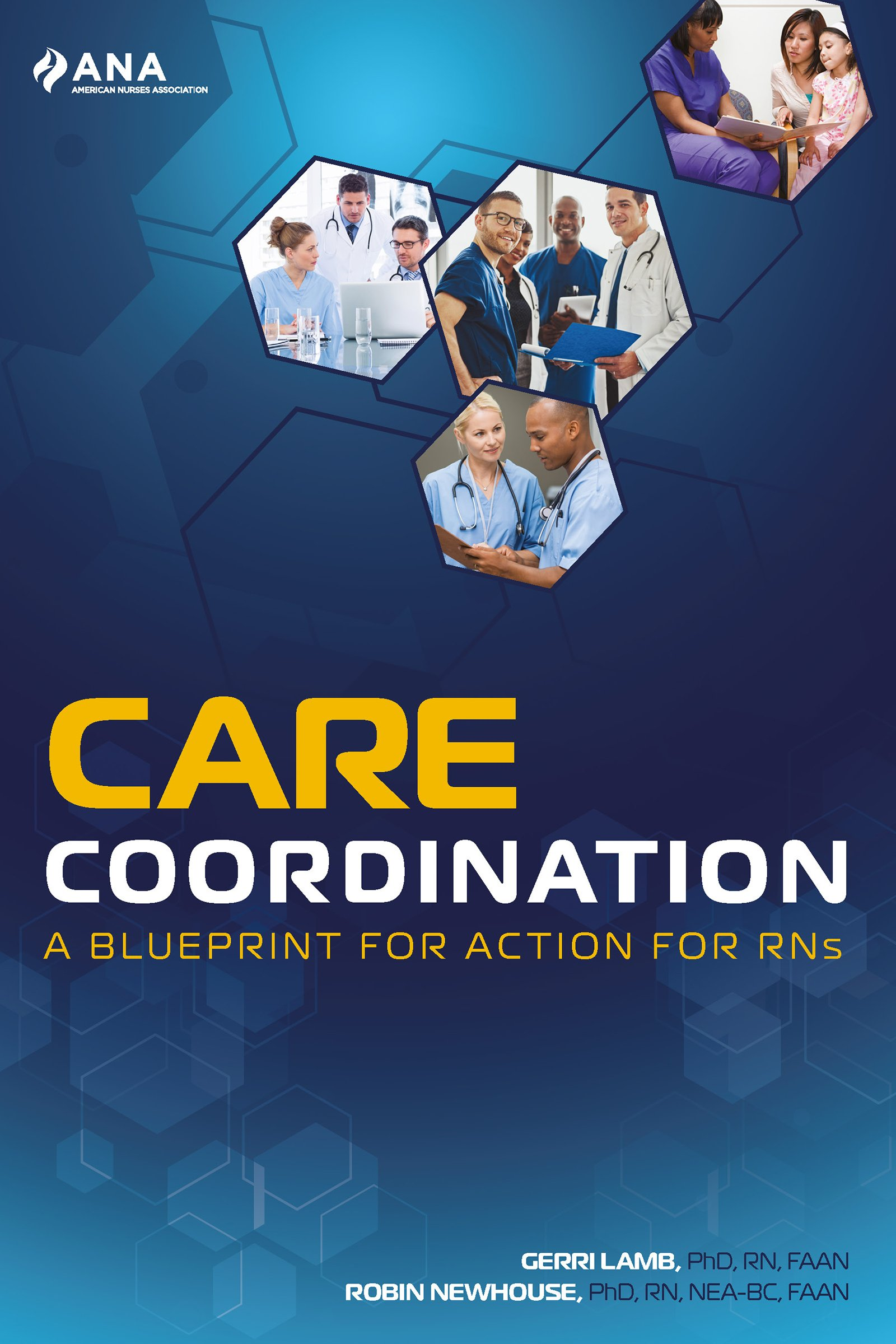 Care Coordination: A Blueprint for Action for RNs PDF