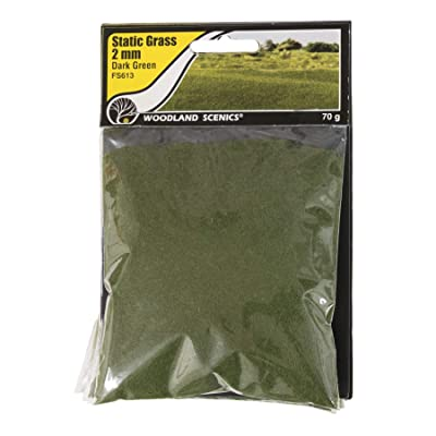 Woodland Scenics FS613 Static Grass, Dark Green 2mm: Toys & Games