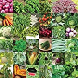 Pyramid Indian Vegetable Seeds Bank for Home Garden 35 Varieties -1675 Seeds