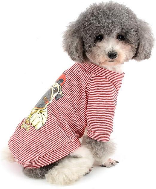Zunea Camisa de Verano para Perro, diseño de Rayas, para Mascotas, Gatos y Chihuahua, Ropa para Perros pequeños: Amazon.es: Productos para mascotas