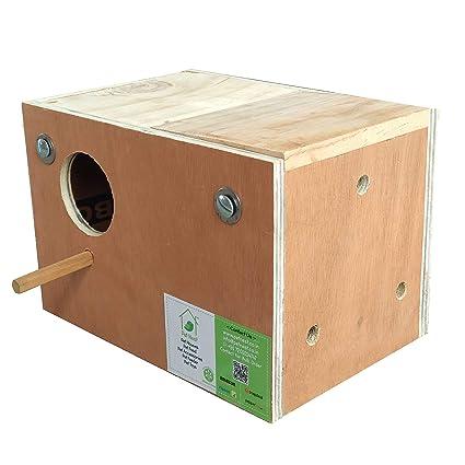 PetNest Budgie Bird and Love Bird Breeding Nest Box