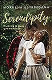 Encontré la pieza que me faltaba: Serie Serendipity 8