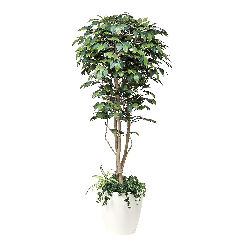 造花アート観葉植物 フィカスベンジャミン1.8植栽付【ビジネスフラワー】<開店開院祝い 誕生日プレゼント 長寿祝いなど各種お祝いにおすすめ> B01M3U4DAI