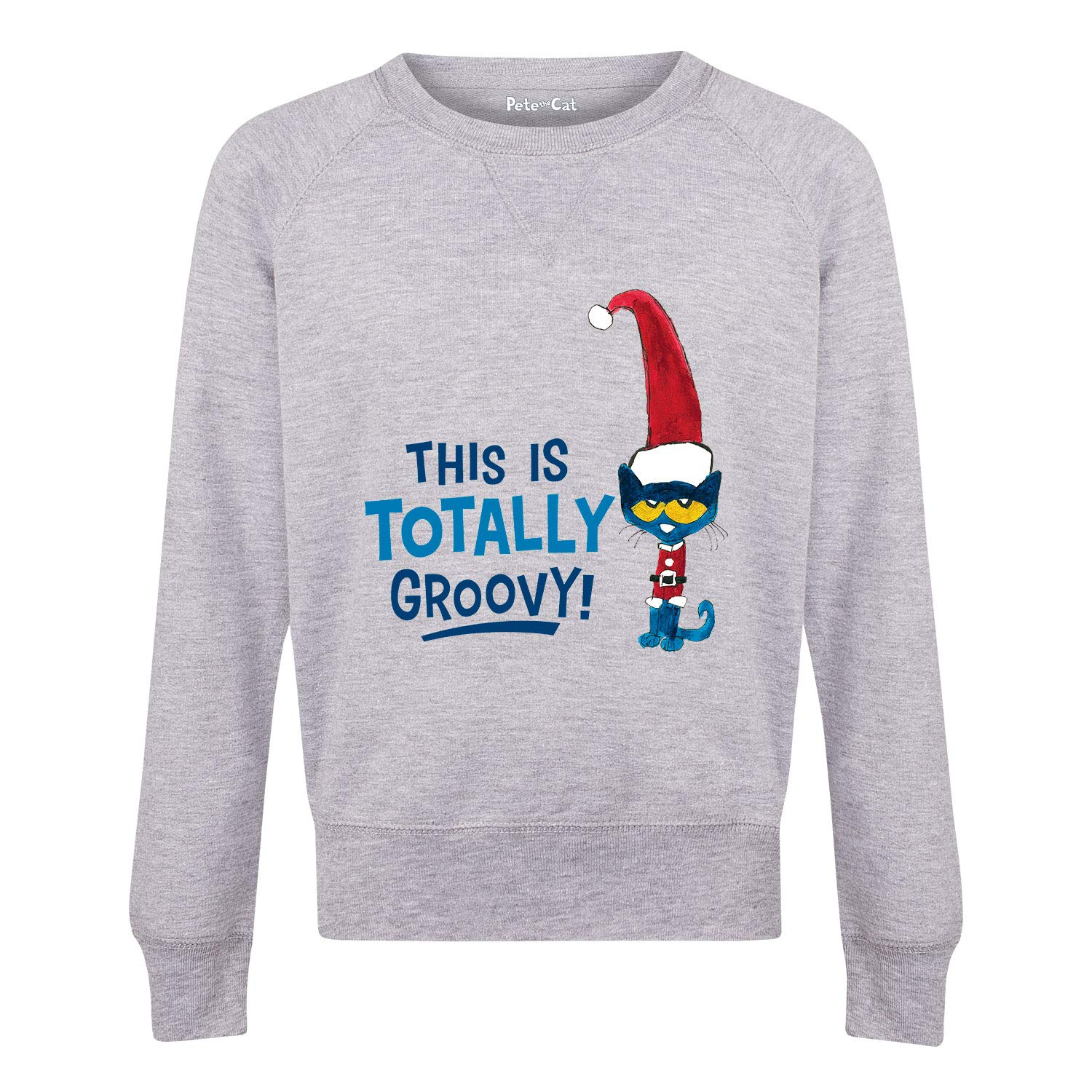 Youth Girls Slouchy Ft Pete the Cat This is Totally Groovy