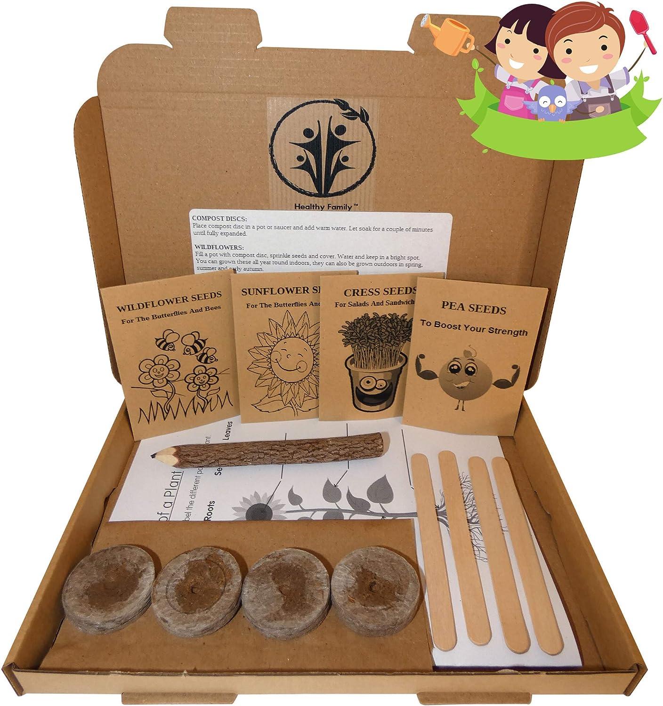 Bee IndoorOutdoor Mini Grow Kit Kid
