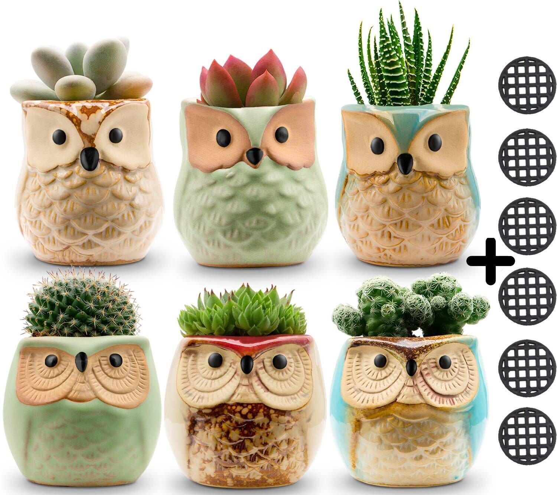 Jomass Owl Pots 2.5 Inch,Flowing Glaze Succulent Pots,Owl Planter Mini Ceramic Pots,Small Flower Plant Cactus Bonsai Container with Hole 6Pack