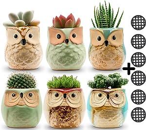 Owl Pots 2.5 Inch,Flowing Glaze Succulent Pots,Owl Planter/Mini Ceramic Pots,Small Flower/Plant/Cactus/Bonsai Container with Hole 6Pack
