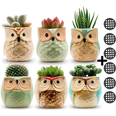 Owl Pots 2.5 Inch,Flowing Glaze Succulent Pots,Owl Planter/Mini Ceramic Pots,Small Flower/Plant/Cactus/Bonsai Container with Hole 6Pack