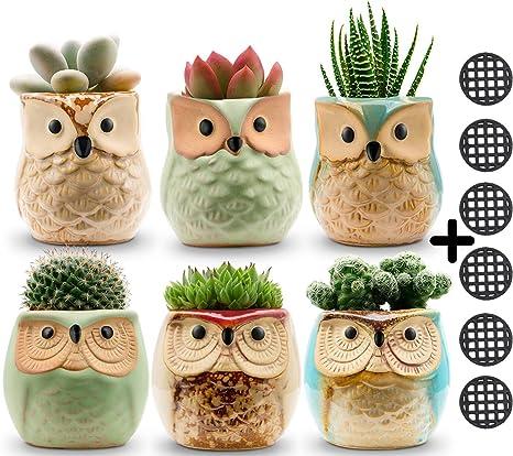 Jomass Owl Pots 2 5 Inch,Flowing Glaze Succulent Pots,Owl Planter/Mini  Ceramic Pots,Small Flower/Plant/Cactus/Bonsai Container with Hole 6Pack