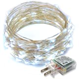 Rtgs Micro LED 100 Cold White Color Lights Plug In on 32 Ft Long Silver Ultra Thin String Wire [NEWEST VERSION] + 100% RTGS Products Satisfaction Guarantee