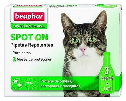 Beaphar pipetas repelentes, gato, 3 unidades