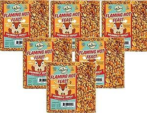 6-Pack of Mr. Bird Flaming Hot Feast Small Wild Bird Seed Cake 4 oz.