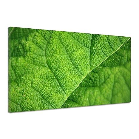 Botanica Sfondo Verde Foglia Vicino Poster Tela Stampa Immagine