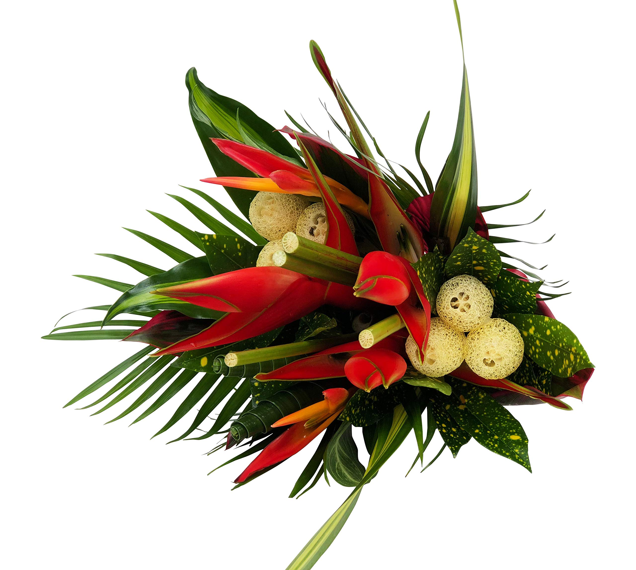 Tropical Bouquet Rainforest Sunrise with Birds of Paradise, Loofah, Lobster Claw, and Tropical Greenery