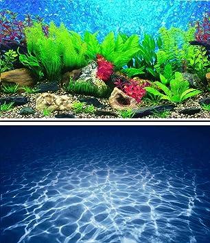 Imagen de fondo de 6o cm para acuario o terrario de reptiles.: Amazon.es: Productos para mascotas