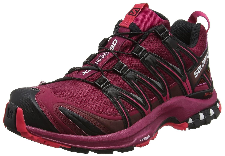 Salomon XA Pro 3D GTX Hiking Shoes Womens B01MTAP9C6 10 B(M) US