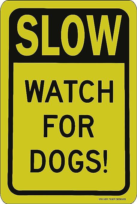 Amazon.com: Lento – Reloj para perros. Amarillo y Negro ...
