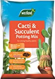 Westland Cacti/Succulent Potting Compost Mix and Enriched with Seramis, 4 L