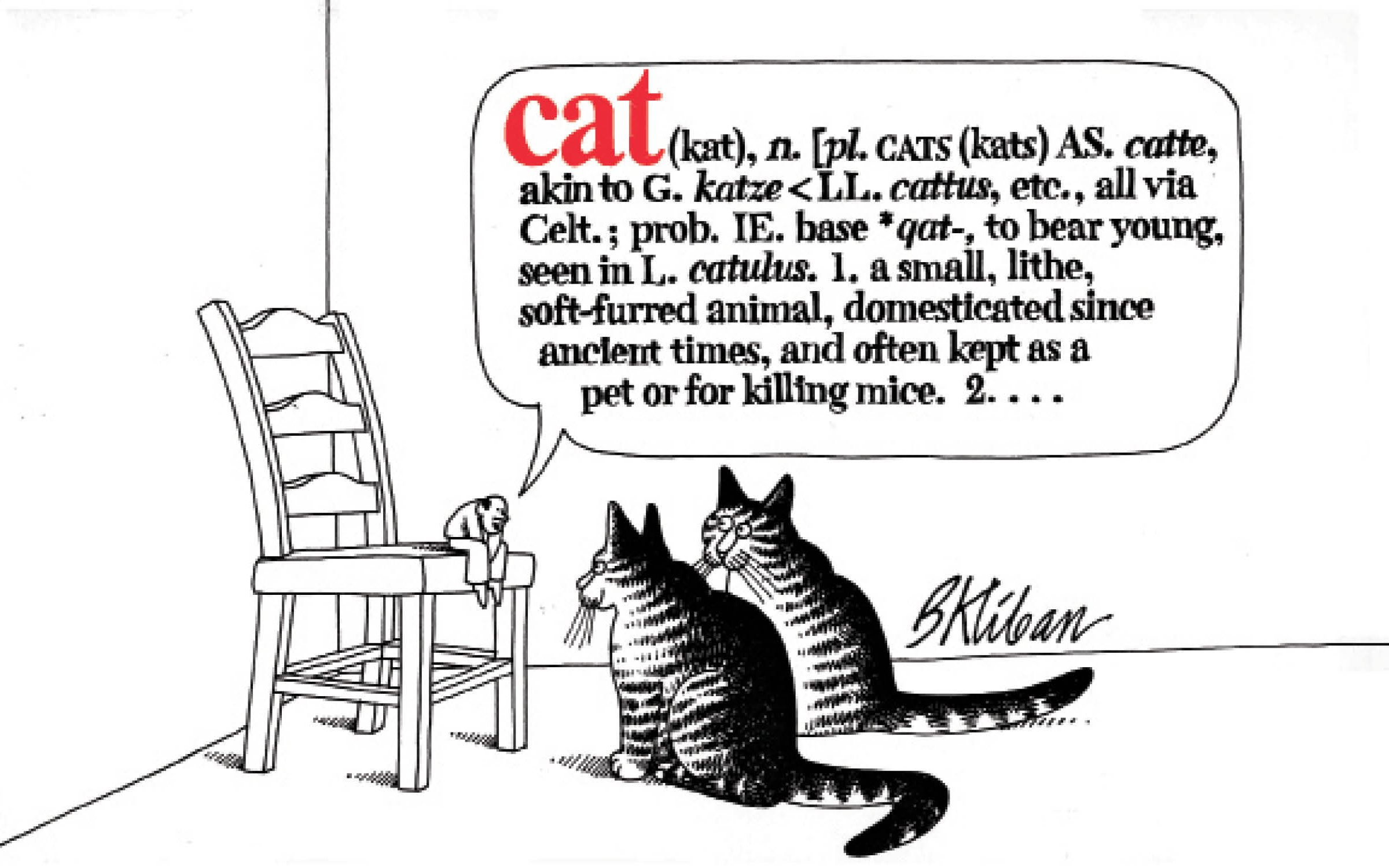 Cat B Kliban 9780911104547 Amazon Books