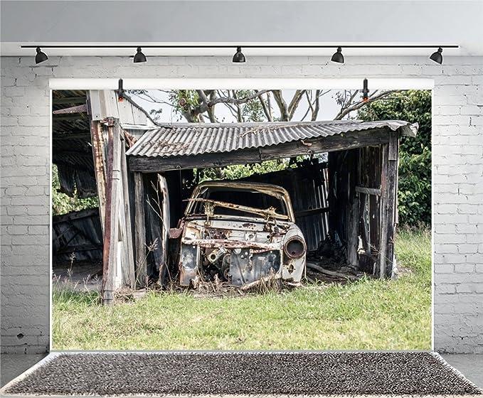 Leyiyi - Fotografía de 8 x 6 pies con fondo de abandonado de Hovel ...