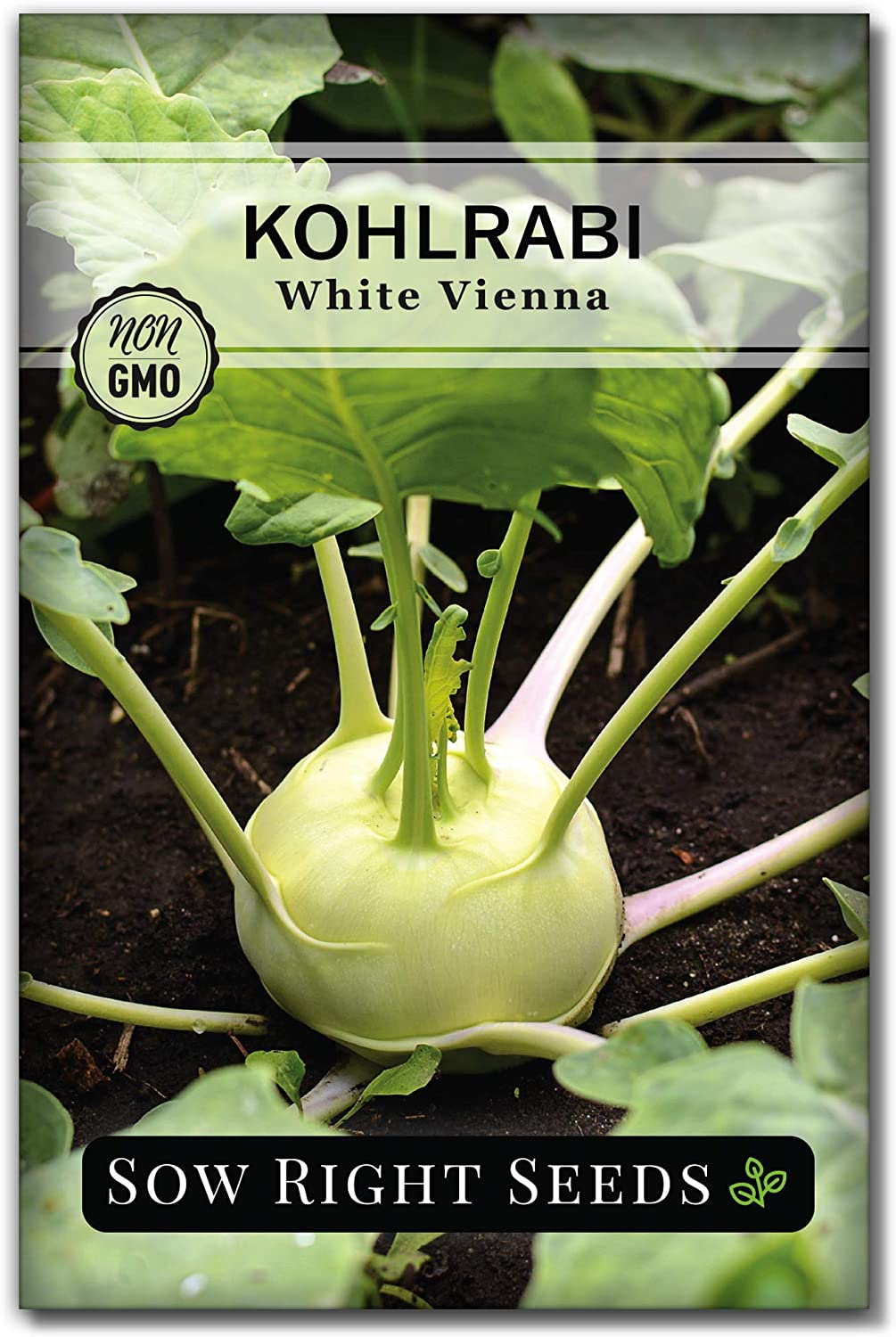 Sow Right Seeds - White Vienna Kohlrabi Seed for Planting - Non-GMO Heirloom Packet with Instructions to Plant a Home Vegetable Garden