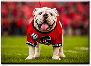 "UGA Georgia Bulldogs Magnet for Fridge - UGA X Mascot 2.5""x3.5"" Photo Decor Premium Tin"