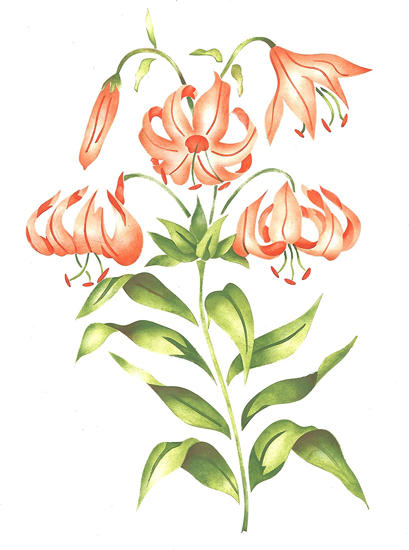 Lily Flower Wall Stencil SKU #1948 by Designer Stencils