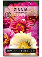 Sow Right Seeds Thumbelina Zinnia Seeds - Full Instructions for Planting, Beautiful to Plant in Your Flower Garden; Non…