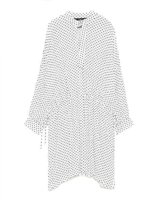 c395d815 Zara Women Polka Dot Shirt Dress 1608/051 (Medium): Amazon.ca ...