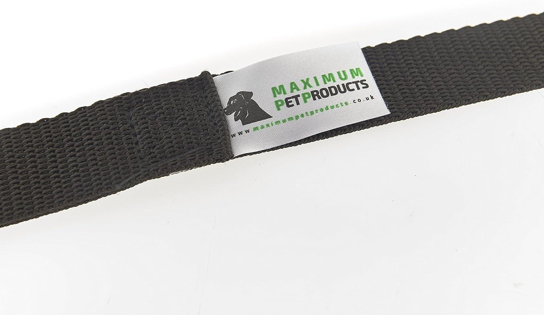 Molto resistente. cavalli lunghezza 15 metri Larghezza 25 mm Guinzaglio da addestramento per cani