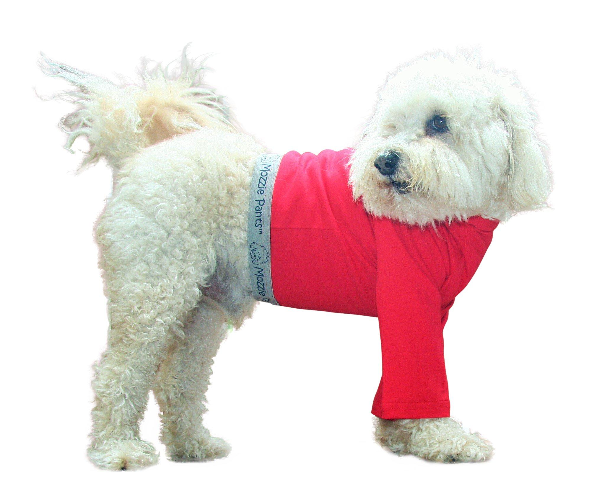 Mozzie Pants Dog T-Shirt, Dog Pants, E-Collar Alternative, Dog Pajamas, Small Dog, Red