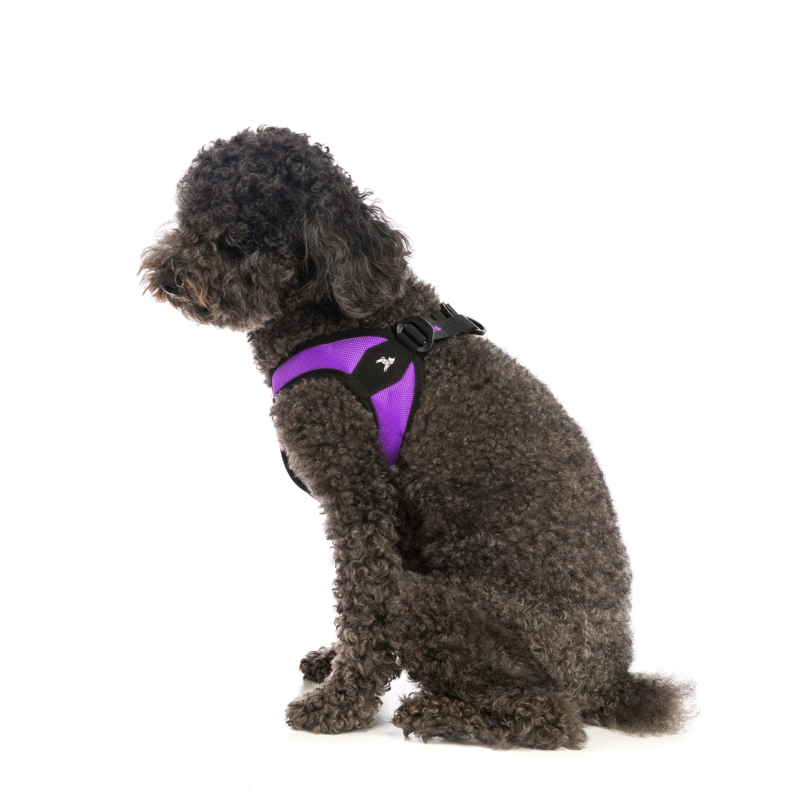 Gooby - Escape Free Easy Fit Harness, Small Dog Step-in Harness for Dogs That Like to Escape Their Harness, Purple, Medium