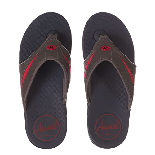 1056cd3dcbd8 Animal Mens Fader Flip-Flops  Amazon.co.uk  Shoes   Bags