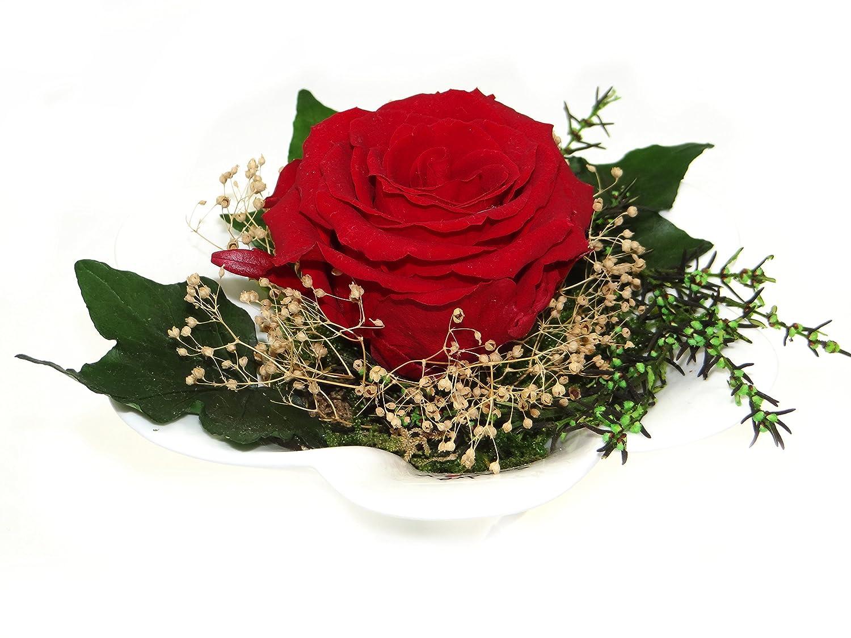 Konservierte Rose in Rot - Blumen-Gesteck aus einer haltbaren Rose enthält eine ECHTE PREMIUM Rose – unser EXKLUSIVES Blumen-arrangement wird handgemacht und mit Liebe gefertigt