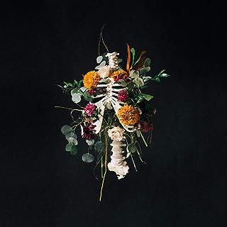 Book Cover: Graves Into Gardens