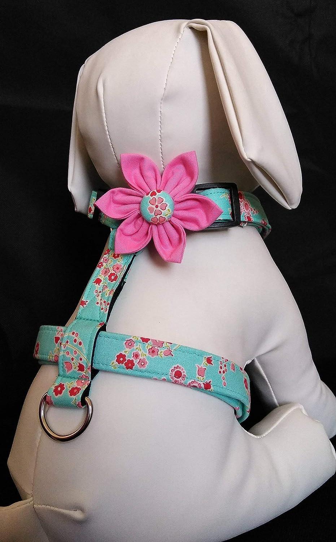 Dog Harness Flower Set - Aqua Floral Print - Adjustable Sizes XS, S, M